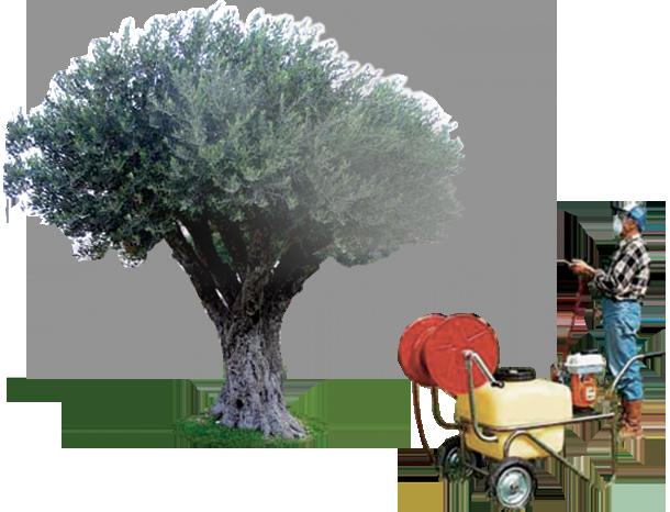 Soil & Grass Conditioner